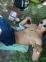 Chico de 20 años busca chica en Uruguay, Las Piedras