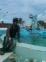 Chico de 28 años busca chica en Cuba, Santiago De Cuba